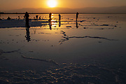 Silhouette of tourists at Sun set over the Dead Sea, Israel