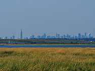 The Manhattan skyline seen from the Jamaica Bay Wildlife Refuge, Queens, New York.