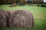 Hay bales sit in a farm field on a cloudy day.