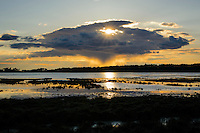 Sunset, Chincoteague National Wildlife Refuge, Virginia, USA
