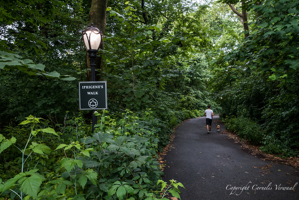 Iphigene's Walk in the Ramble of Central Park