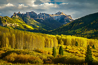 Beautiful aspens and dramtic strom light in the San Juan Mountains, Colorado