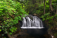 Rolley Creek Falls on Rolley Creek in Rolley Lake Provincial Park near Mission, British Columbia, Canada