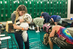 September 10, 2017 - St. Petersburg, Florida, U.S. - SAMANTHA BELK says goodbye to her maltese, Gardolf until after the Hurricane Irma in a locker room at John Hopkins Middle School. The school filled classrooms and hallways with people evacuating before the storm makes landfall. The shelter welcomes people from the area with pets and those with special needs. (Credit Image: © Eve Edelheit/Tampa Bay Times via ZUMA Wire)