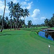 Golf course, Hyatt hotel.Puerto Rico