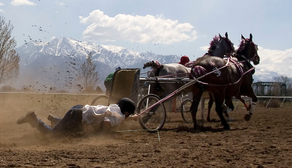 Driver Clint Bennett, who was not hurt, gets drug along by his team after he tipped and crashed when one of his horses stumbled at the starting gate during the 10th race of the first weekend of the World Championships of Cutter & Chariot Racing is held at the Golden Spike Events Center at the Weber County Fairgrounds in Ogden, Utah , Saturday, March 24, 2007. The final races will be held on Saturday and Sunday March 31st and April 1st at the same location. This weekends races are part of the qualifying races for next weekends finals. August Miller/ Deseret Morning News
