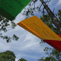 Prayer flags are pictured Sunday September 21, 2014 during a celebration of International Day of Peace sponsored by Grandmothers for Peace at Hugh MacRae Park in Wilmington, N.C. (Jason A. Frizzelle)