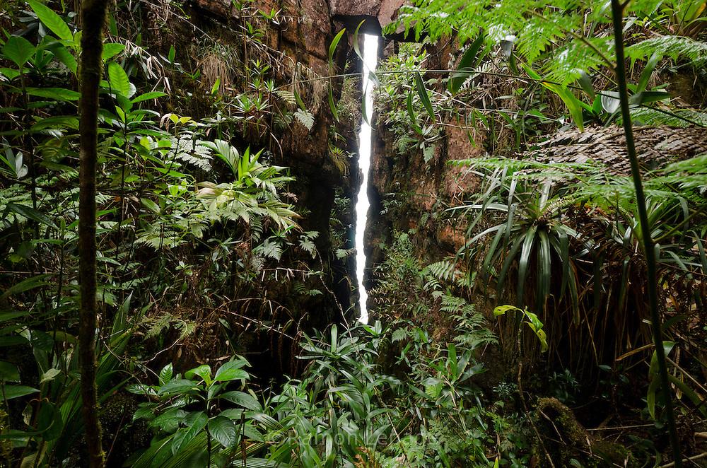 """AUYANTEPUY, VENEZUELA. El Auyantepuy es el mayor de los tepuis del Parque Nacional Canaima. En sus 700 kms2 alberga el salto angel o conocido por lengua indígena Pemon como """"Kerepacupai Vena; es la caída de agua más grande del mundo con sus 979 metros de altura. (Ramon lepage /Orinoquiaphoto/LatinContent/Getty Images)"""