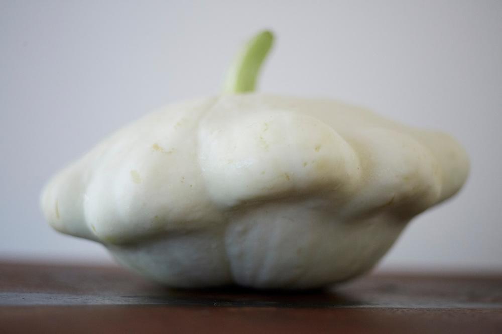 white scallop squash