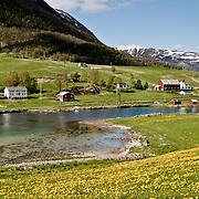 Three weeks aboard the Kong Harald. Hurtigruten, the Coastal Express. The Vesteralen islands.