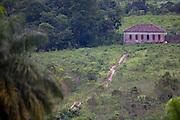 Sao Roque de Minas_MG, Brasil...Parque Nacional da Serra da Canastra em Sao Roque de Minas, Minas Gerais. Na foto uma casa...Serra da Canastra National Park in Sao Roque de Minas, Minas Gerais. In this photo a house...Foto: JOAO MARCOS ROSA / NITRO..