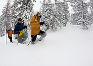 Side view of three people snowshoeing in the woods in deep powder in Bend, Oregon. (releasecode: jk_mr1033, jk_mr1035, jk_mr1034) (Model Released)
