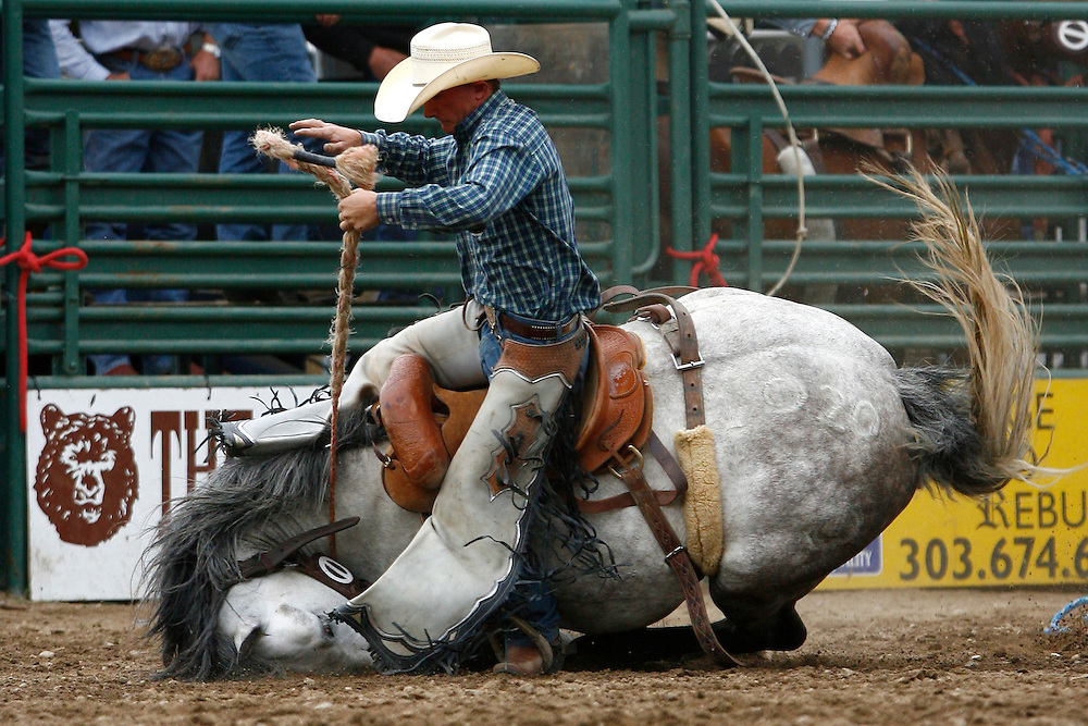 061911-Evergreen, COLORADO-evergreenrodeosun-Saddle bronc rider John Redig, of Gaviota, CA, is thrown to the ground after his horse stumbles during the Evergreen Rodeo Sunday, June 19, 2011 at the El Pinal Rodeo Grounds. Redig received a re-ride. .Photo By Matthew Jonas/Evergreen Newspapers/Photo Editor