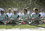 Photo. © Peter Spurrier/Intersport Images.13/03/2004  - Rowing -Cambridge Blue Boat v Leander.Cambridge stern four [left to right] Nate kirk, Wayne Pommen, Steffen Buschbacher, and Andrew Shannon, move into the Hammersmith Bend and the rougher water.[Mandatory Credit Peter Spurrier/ Intersport Images] Varsity: Boat Race [Mandatory Credit: Peter Spurrier/Intersport Images] . Rough Water and Spray. Rough, Choppy, Water, Conditions.