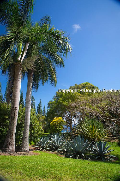 World Botanical Gardens & Waterfalls.at Botanical World, Hamakua Coast, Big Island of Hawaii