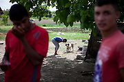 Boy playing with a dog at the Roma area of Frumusani.