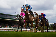 LEXINGTON, KY - OCTOBER 07: Bucchero #2, ridden by Fernando De La Cruz drives to the finish line in the Woodford Presented by Keeneland Select Stakes at Keeneland Race Course on October 07, 2017 in Lexington, Kentucky. (Photo by Alex Evers/Eclipse Sportswire/Getty Images)