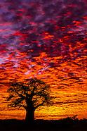 Botswana-Nature & Landscape