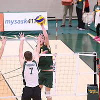1st year right-side hitter Matthew Aubrey (7) of the Regina Cougars in action during Men's Volleyball home game on November 18 at Centre for Kinesiology, Health and Sport. Credit: /Arthur Images