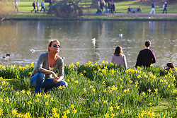 © Licensed to London News Pictures. 22/02/2019. London, UK. A woman enjoy the on a warm and sunny day in St James's Park as daffodils starts to blossom. Photo credit: Dinendra Haria/LNP