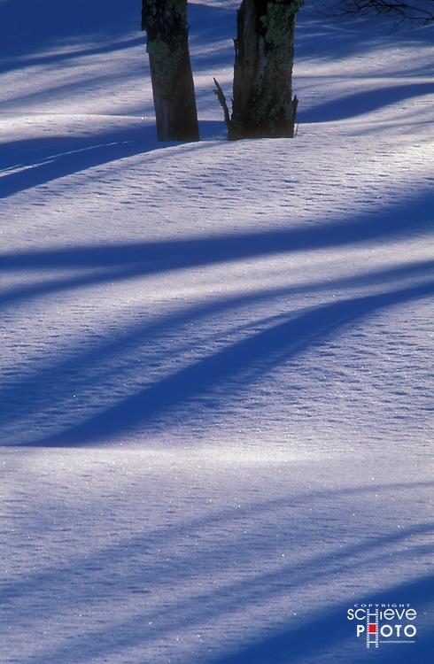 Setting sun casts shadows on new fallen snow.