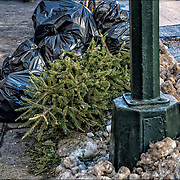 The sidewalks of New York turn into tree graveyards in the weeks after Christmas. This year, the Department of Sanitation will conduct special collections from Jan. 5-16, according to its website. People can leave their trees on the curb to be picked up for recycling.