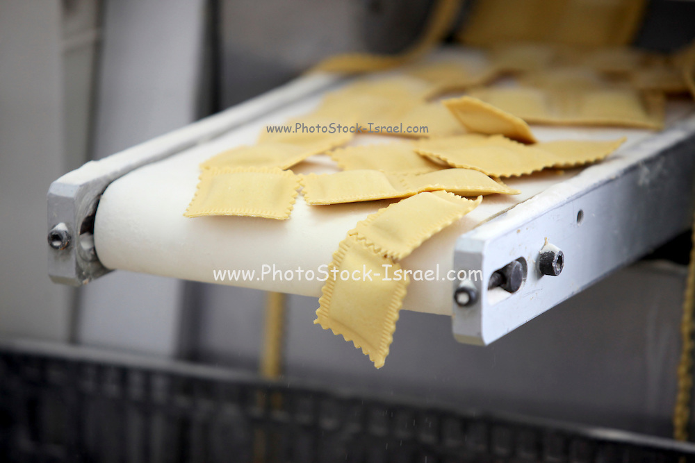 Ravioli production line