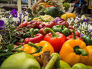 12 FEBRUARY 2015 - BANGKOK, THAILAND:  Fresh vegetables on a boat docked at the new floating market on Khlong Phadung Krung Kasem, a 5.5 kilometre long canal dug as a moat around Bangkok in the 1850s. The floating market opened at the north end of the canal near Government House, which is the office of the Prime Minister. The floating market was the idea of Thai Prime Minister General Prayuth Chan-ocha. The market will be open until March 1.   PHOTO BY JACK KURTZ