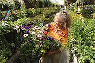 A Palmer, Alaska-area farmer prepares a flower basket for a customer.