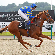 Miracle Of Medinah and L P Keniry winning the 5.40 race