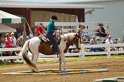 McLean County Fair - horsemanship competition