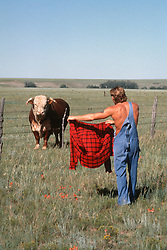 Shirtless man in overalls teasing a bull with his red shirt on a ranch in New Mexico