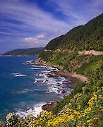 Image of a coastal road near Cairns, Far North Queensland, Australia
