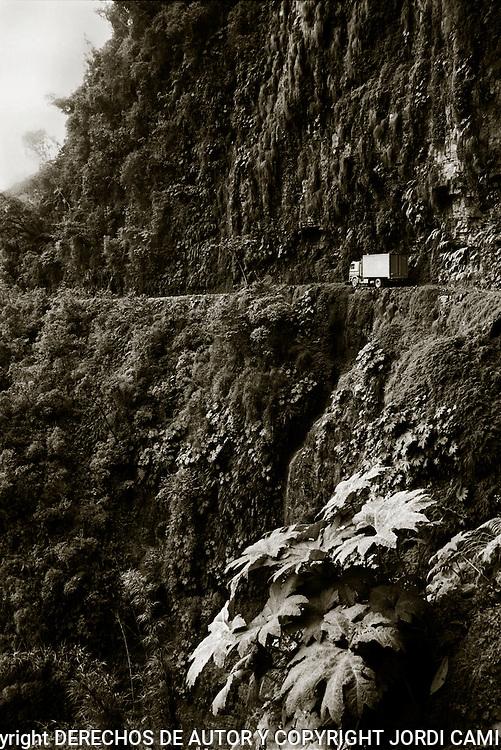 El paisaje por donde discurre la parte m&middot;s baja de la carretera de los Yungas es de lo m&middot;s fascinante, con acantilados y saltos de agua acompa&Ograve;ados de una vegetaci&Ucirc;n muy densa. Bolivia.<br /> Foto : JORDI CAMI