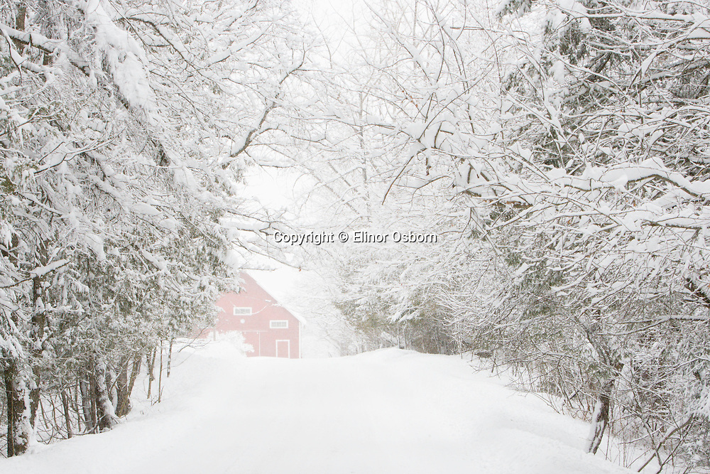 Snowing, country road and barn