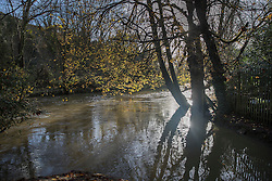 © Licensed to London News Pictures. 22/11/2016. Dorking, UK. The River Mole has covered the stepping stones at Boxhill near Dorking. Parts of the United Kingdom are still experiencing flooding after storm Angus. Photo credit: Peter Macdiarmid/LNP