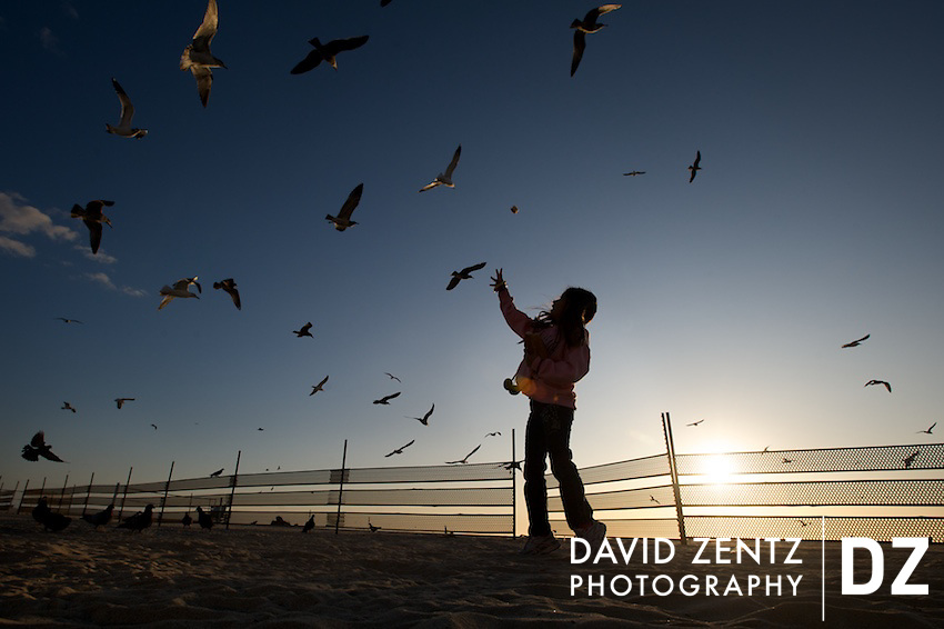 A young girl tosses up a piece of bread while feeding a flock of seagulls at Venice Beach in Los Angeles, California on Nov. 28, 2009.