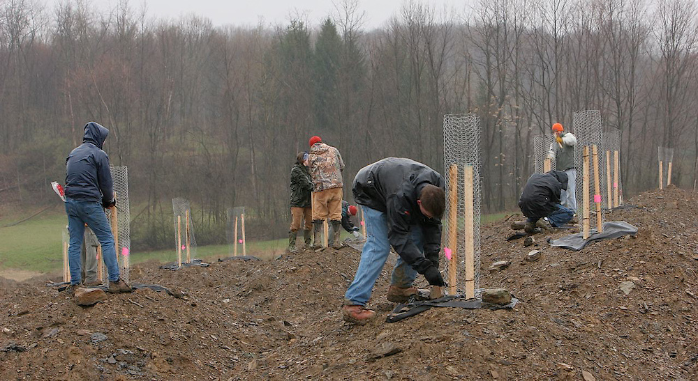 OU students, and volunteers plant American Chestnuts trees in a mine being refortested in the Jockey Hollow Wildlife area in Northeast Ohio near Belmont and Harrison Counties. Conditions were terrible with sleet, heavy rain and cold temperatures. OU Professor Brian McCarthy helps supervisor of ongoin program.                                   photo kevin white