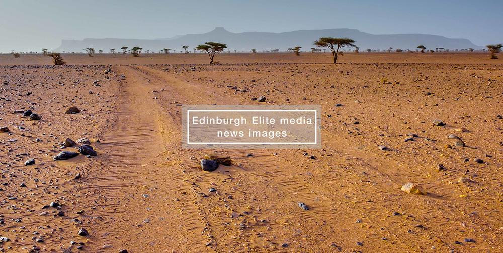 The Moroccan desert near Foum Zguid in the south of Morocco<br /> <br /> (c) Andrew Wilson | Edinburgh Elite media