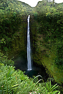 Akaka Falls, located on Big Island of Hawaii, Hilo