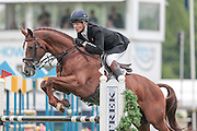 CHILLI MORNING ridden by William Fox-Pitt  competing in the show jumping at Bramham International Horse Trials 2016 at  at Bramham Park, Bramham, United Kingdom on 12 June 2016. Photo by Mark P Doherty.