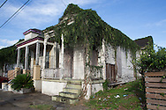 vine covered blighted home in New Orleans