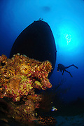 Israel, Eilat, Red Sea, - Underwater photograph of a diver swimming near a sunken boat. The ship was sunk by the Israeli Navy to induce coral reef growth