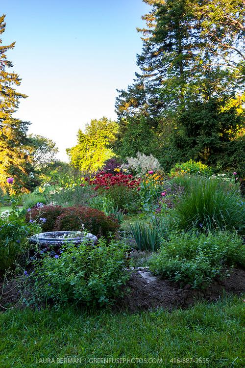 Jane Currelly's garden.