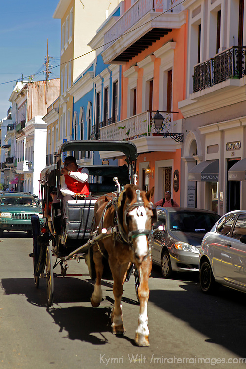 USA, Puerto Rico, San Juan. Horse-drawn Carriage in San Juan, Puerto Rico.