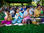 "17 MARCH 2018 - BANGKOK, THAILAND:  People pray during a ""sticky rice merit making"" in Lumpini Park in Bangkok. Sticky rice merit making is a merit making in the Isan / Lao style, when people present small amounts of cooked sticky rice (also known as glutinous rice) to Buddhist monks. Isan is the northeast region of Thailand.     PHOTO BY JACK KURTZ"