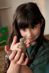 United States, Washington, Gig Harbor, girl (age 9) holding leopard gecko  MR