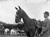 1954 - 02/06 RDS Horse Show at Show Grounds, Ballsbridge