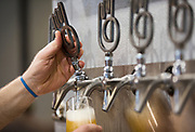 Beer is poured at Working Draft Beer Company in Madison, Wisconsin, Thursday, March 22, 2018.