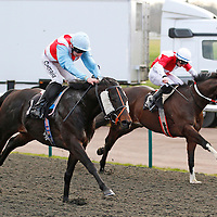 Diamond Vine and Luke Morris winning the 3.00 race